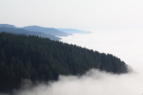 fog coast view or foggy scenic pacificocean coastline oregoncoast pacificcoast capeperpetua newportoregon