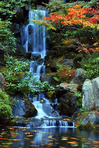 gardens oregon portland japanese waterfall nikon falls nikkor heavenly bigmomma d80 pfogold 3wayassignment83