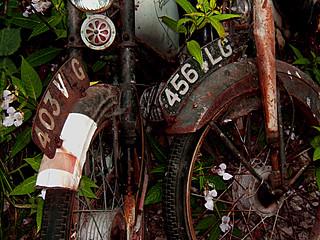 0ld scramble bikes