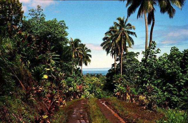 026 The Road to Afareaitu