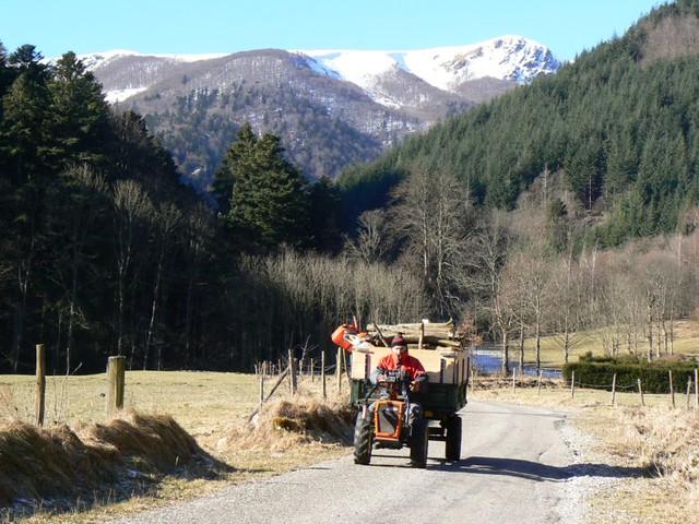 Vallée de Mittlach (Vosges)