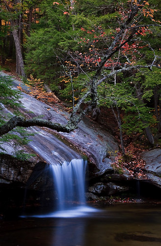 color fall water creek river flow waterfall stream newhampshire whitemountains nh foliage cascade