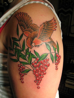 Bird and Berries | by Shannon Archuleta