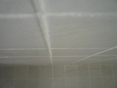 182/366 - Bathroom tiles