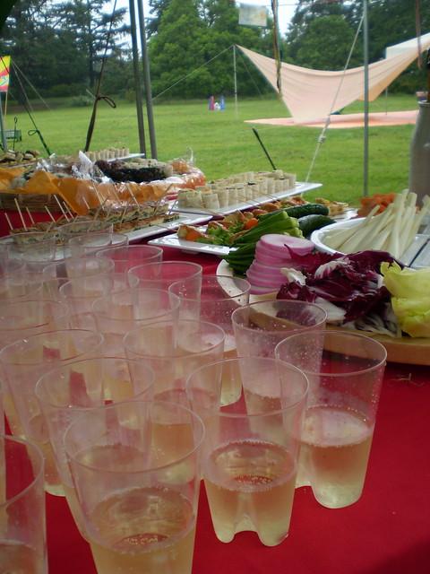 Wedding Party at Showakinen Park 3