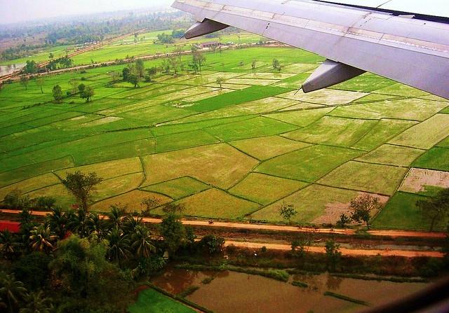 LAOS , Vientiane , Anflug über Reisfeldern 12346