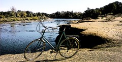 Bicycle Near River | by Rex Kerr