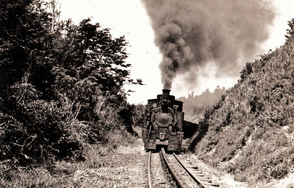 Blackball-Roa line 1951