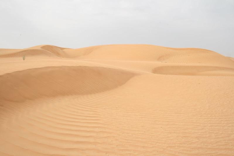 Desert 036