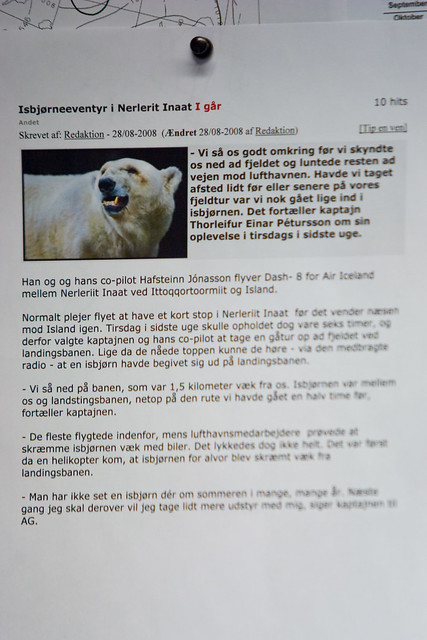 Thorleifur S Polar Bear Incident Olafur Kr Olafsson Flickr