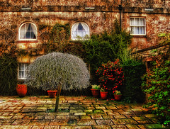 The Secret Garden | by Hexagoneye Photography