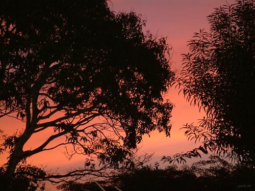 sunset atardecer photo july julio panama 2008 flickrexplorer dscf0007 juancho507