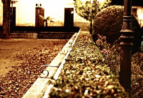 Parque | by adesarmiento