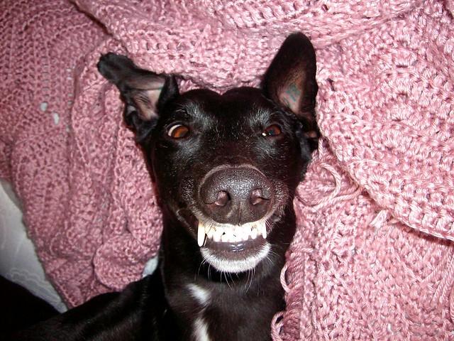 Smiling again!