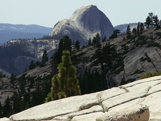 Half Dome from Olmsted Point | by Bruno's Flickr