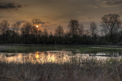 water sunrise landscape pond nikon d70 f8 hdr 202 iso320 3xp tonemapped