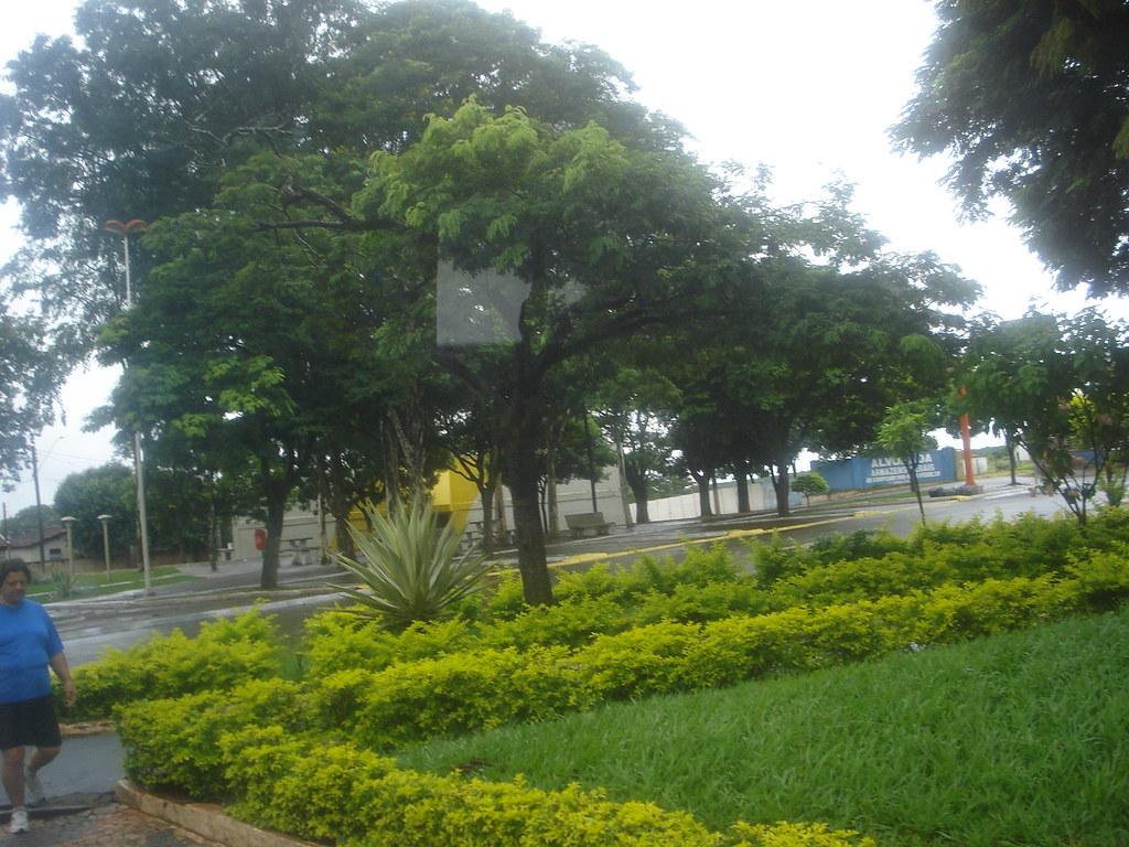 Onda Verde São Paulo fonte: live.staticflickr.com