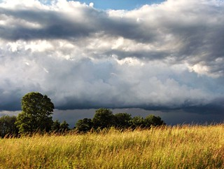 storm's building2 | by Lunablu6363