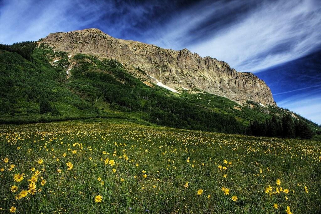 Gunnison National Forest Colorado