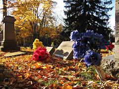 Oakwood Cemetery - Troy, NY - 21 by sebastien.barre