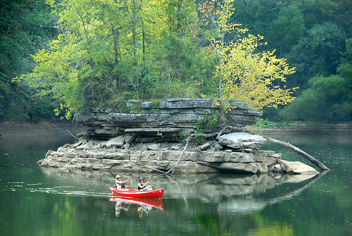 water colors leaves creek island stream canoe