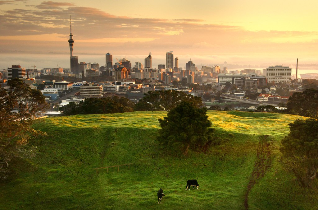 What Auckland Never Looks Like