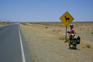 DSC03026 Nancy with Lllama crossing sign | by Hobobiker