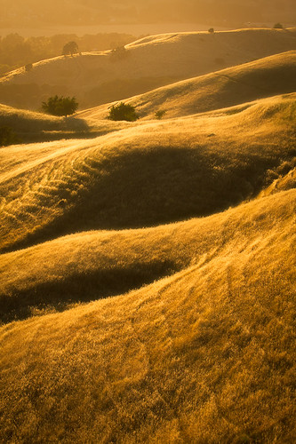 lines golden oak vacaville lagoon hills valley solano rolling
