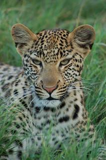 Okavango Delta, Botswana | by Sara&Joachim