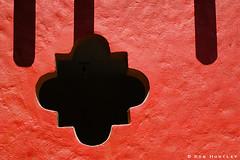 Orange and black. | by Rob Huntley Photography - Ottawa, Ontario, Canada