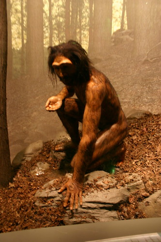 Homo erectus | by Ryan Somma