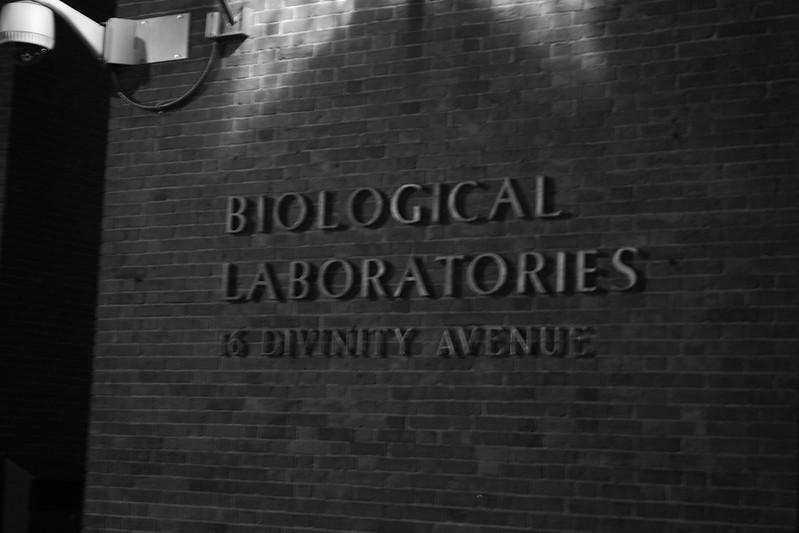 Divine Biology