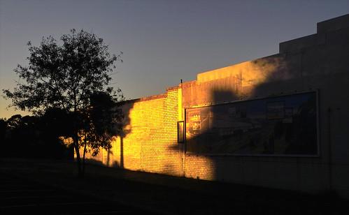 sunset sun reflection wall gold collie sigma sd10