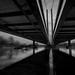 Crossing by Les Rho@des