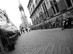 Delft view