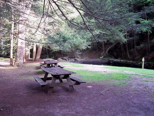 Picnic area at Mashamoquet Brook, State Park, Connecticut | by J. Stephen Conn
