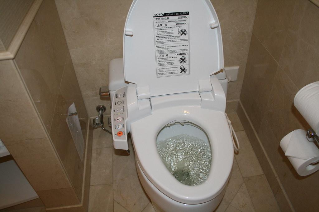 Japanese Toilets Toilettes Japonaises Des Toilettes Typi Flickr