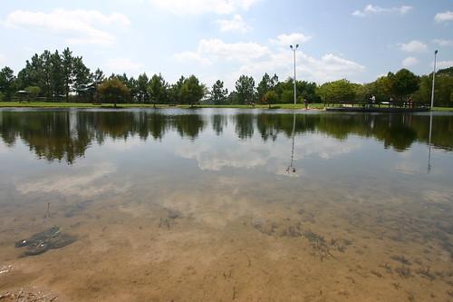 pond tffc