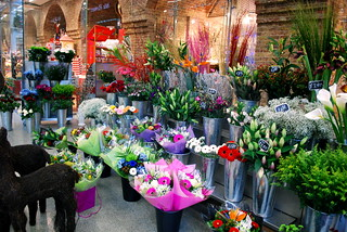 flowers at the train station   by wolfsavard