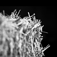 Bala... de paja // Bale of straw