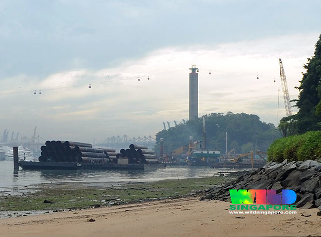 Reclamation at Sentosa for the IR