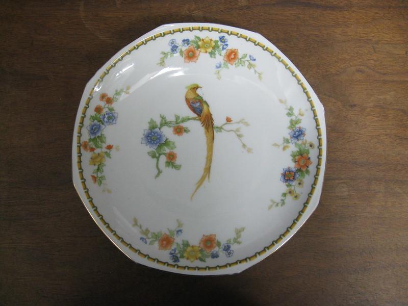 bird plate #1
