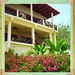 B & B Cerrito Tropical, Taboga Island
