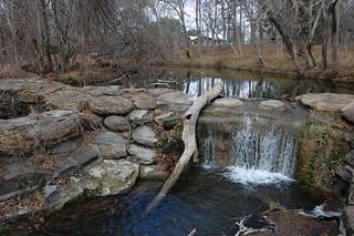 Lockhart State Park   by Stephen Ramirez @ Birdsiview.org