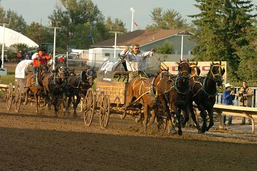 Calgary Stampede Rodeo 2008 Calgary Alberta July 7