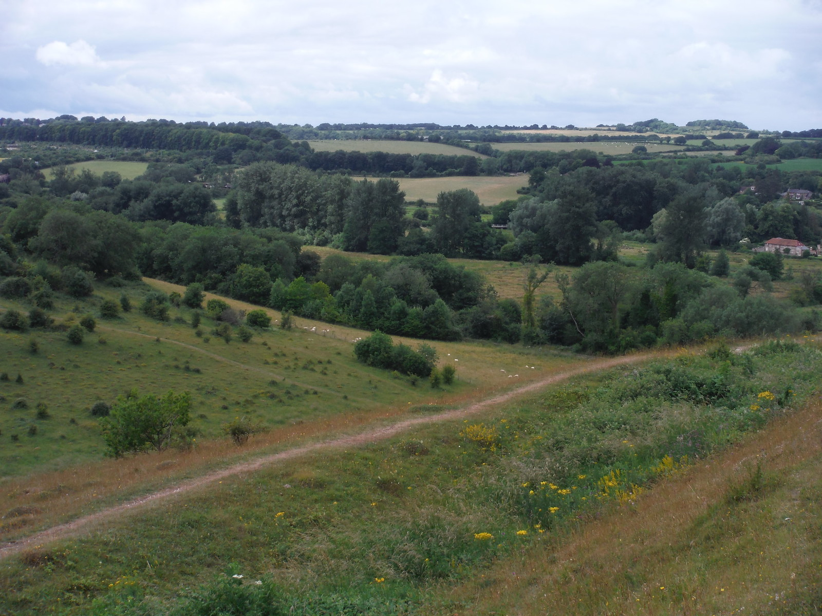 Plague Pit Valley SWC Walk 15 : Winchester Circular