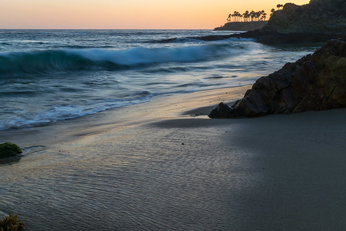 ocean california longexposure trees sunset sky tree beach geotagged evening sand nikon waves unitedstates palmtrees pacificocean palmtree lagunabeach nikond5300