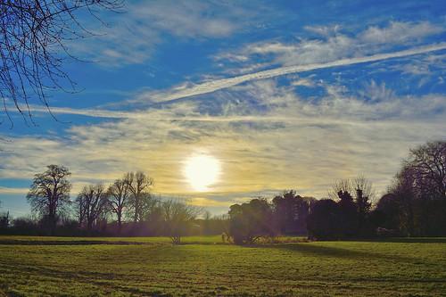 wendover buckinghamshire landscape sky clouds field tree hdr grass sun branch nikon d5200 1855mm