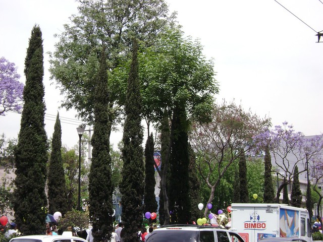 Calzada de Guadalupe, Ciudad de México/Mexico City, México - www.meEncantaViajar.com
