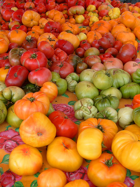 Gorgeous Tomatoes at the Farmer's Market